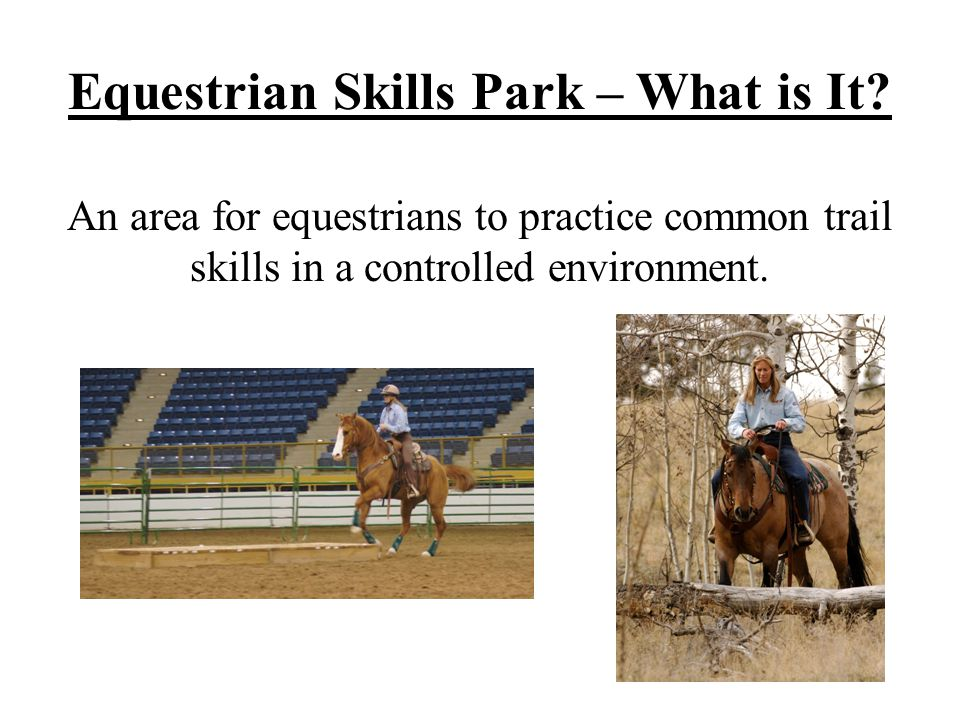 Equestrian Skills Park – What is It? An area for equestrians to practice common trail skills in a controlled environment.