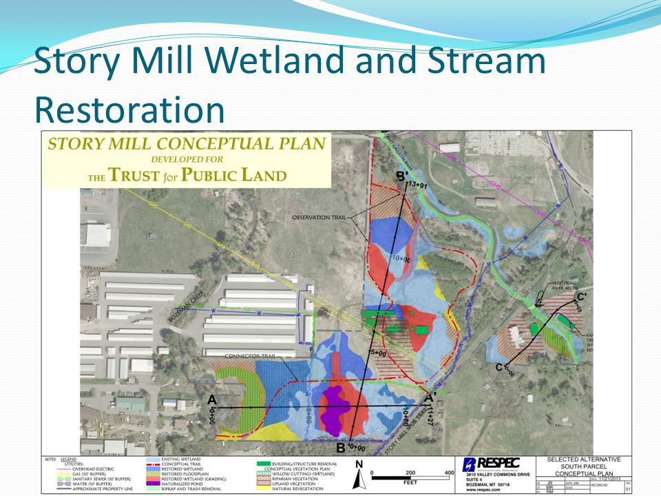 Story Mill Wetland and Stream Restoration