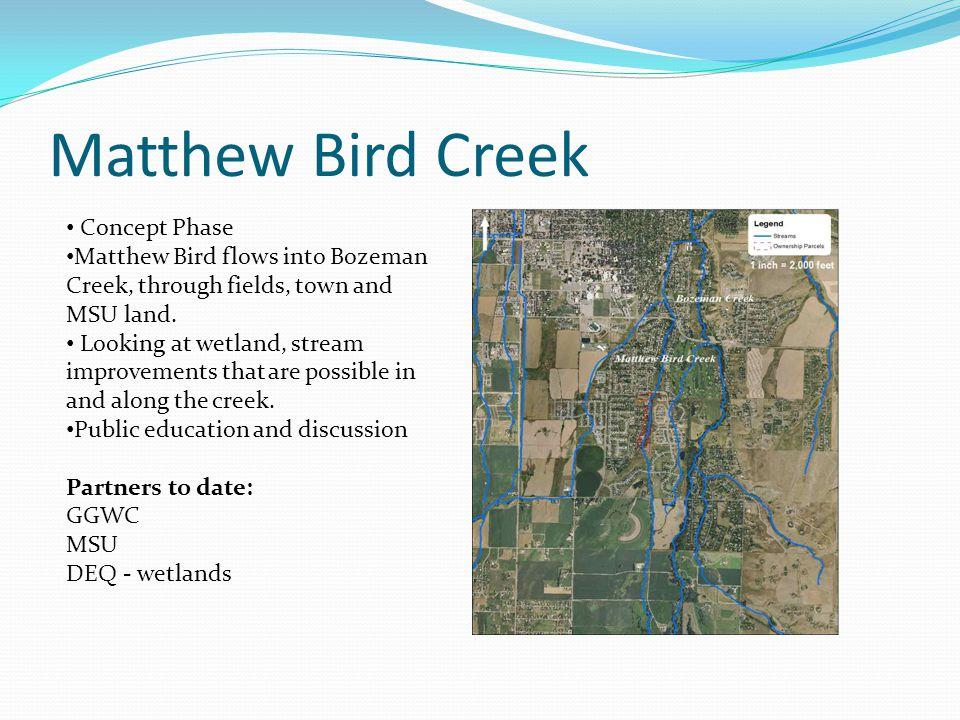 Matthew Bird Creek Concept Phase Matthew Bird flows into Bozeman Creek, through fields, town and MSU land.
