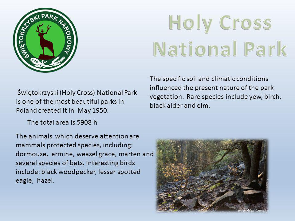 Świętokrzyski (Holy Cross) National Park is one of the most beautiful parks in Poland created it in May 1950.