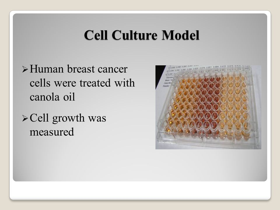 Cell Culture Model Human breast cancer cells were treated with canola oil Cell growth was measured