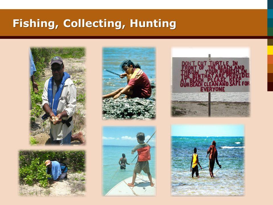 Fishing, Collecting, Hunting