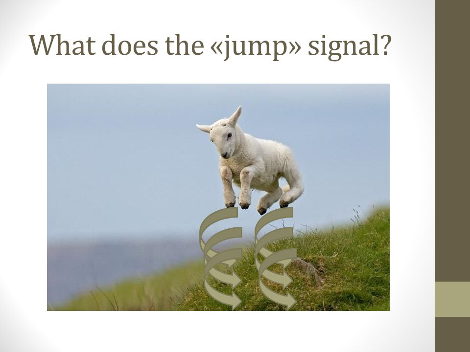 What does the «jump» signal?