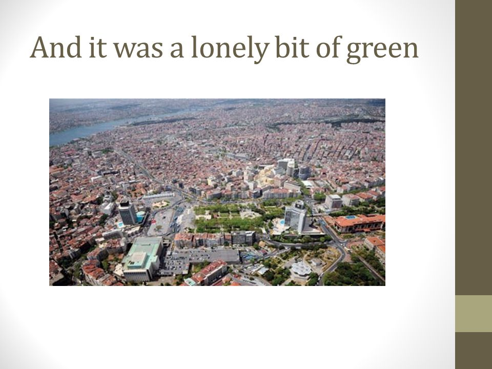 And it was a lonely bit of green