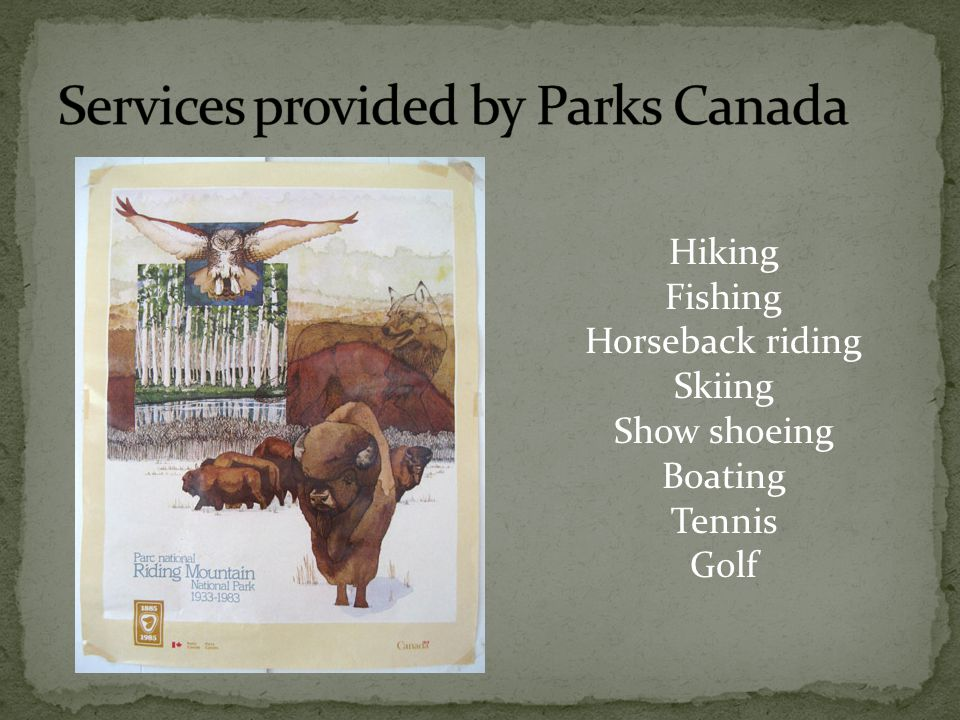 Hiking Fishing Horseback riding Skiing Show shoeing Boating Tennis Golf