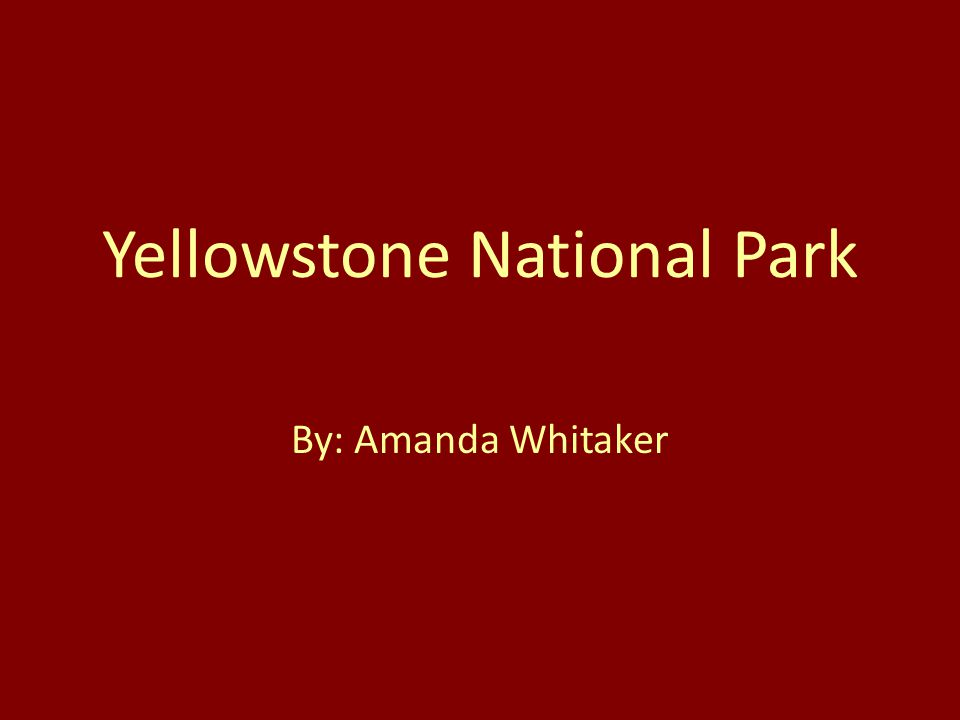 Yellowstone National Park By: Amanda Whitaker