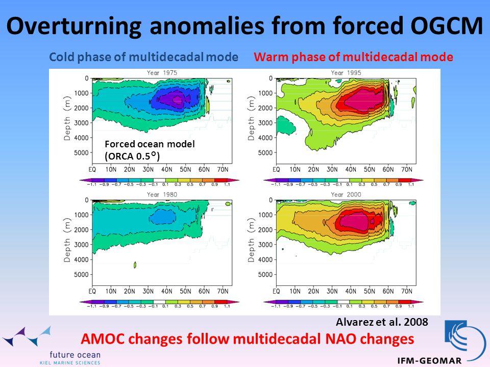 Overturning anomalies from forced OGCM Forced ocean model (ORCA 0.5°) Alvarez et al.