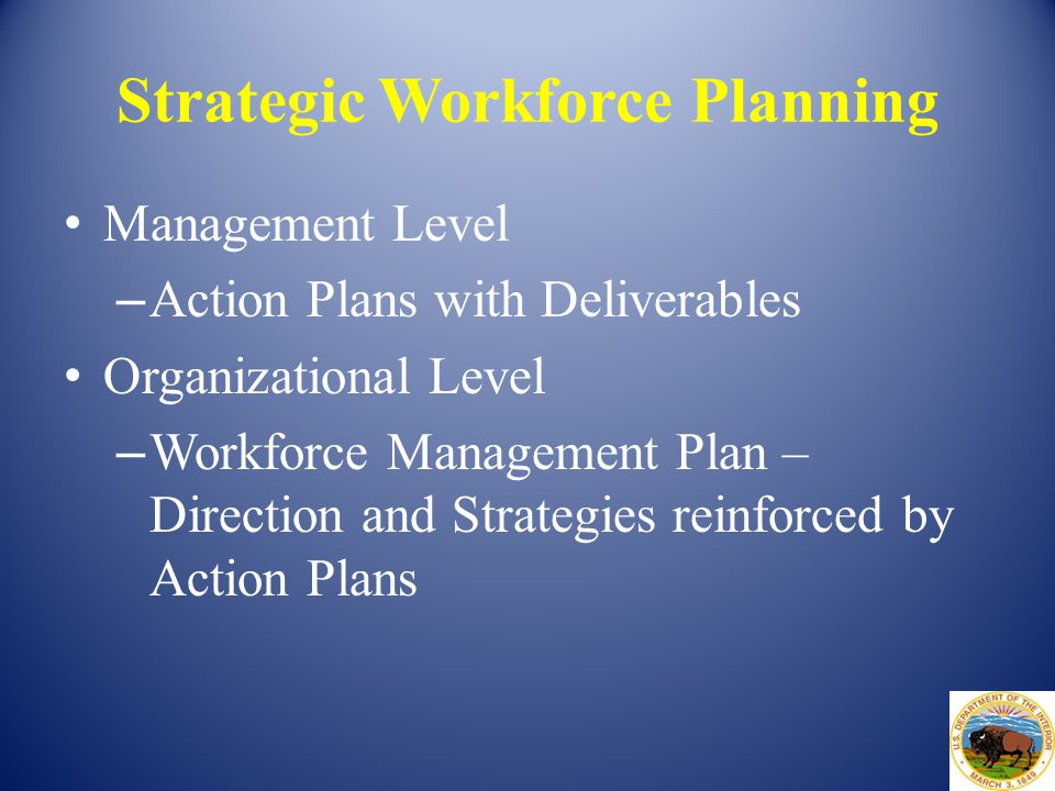 Strategic Workforce Planning Management Level – Action Plans with Deliverables Organizational Level – Workforce Management Plan – Direction and Strate