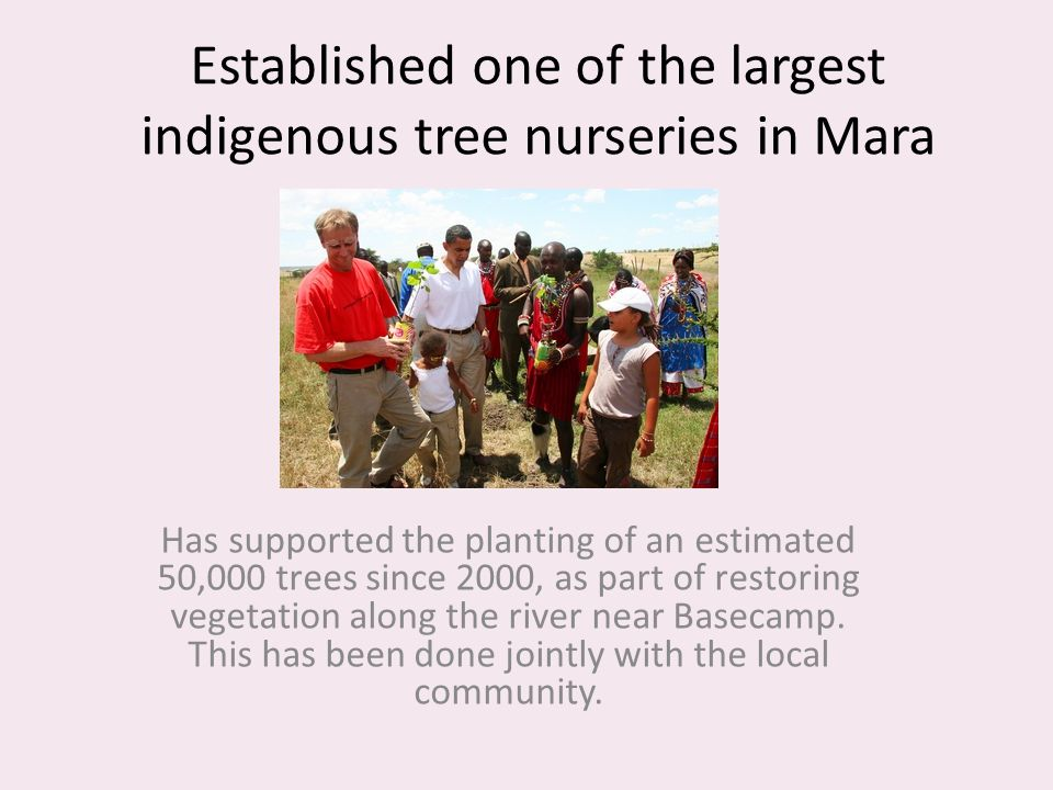 Established one of the largest indigenous tree nurseries in Mara Has supported the planting of an estimated 50,000 trees since 2000, as part of restor