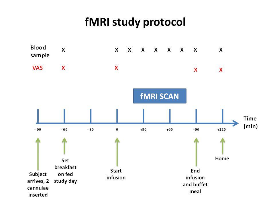 fMRI study protocol