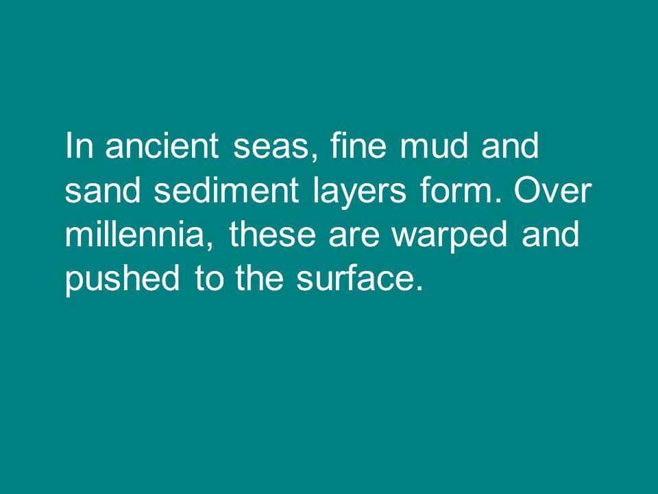 430 million years ago…