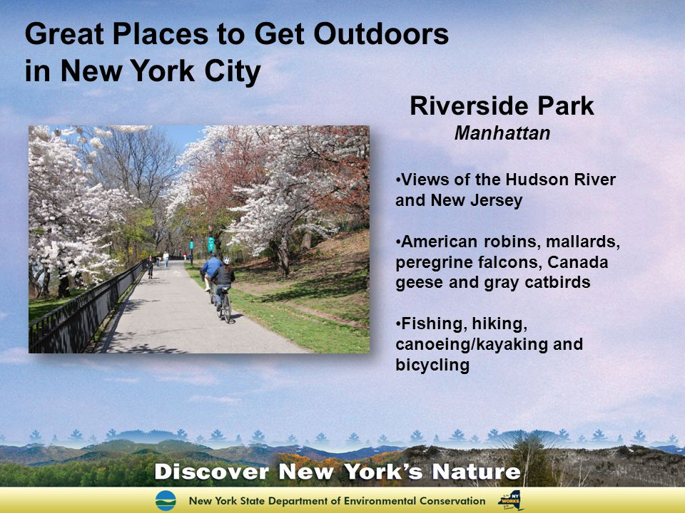 Riverside Park Manhattan Views of the Hudson River and New Jersey American robins, mallards, peregrine falcons, Canada geese and gray catbirds Fishing, hiking, canoeing/kayaking and bicycling Great Places to Get Outdoors in New York City