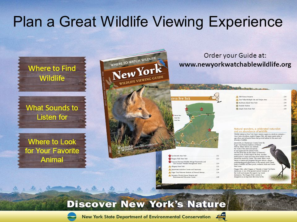 Plan a Great Wildlife Viewing Experience Order your Guide at:   Where to Find Wildlife Where to Look for Your Favorite Animal Where to Find Wildlife What Sounds to Listen for