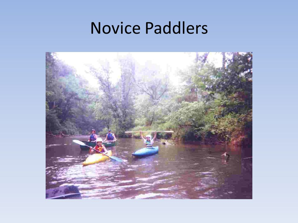 Novice Paddlers