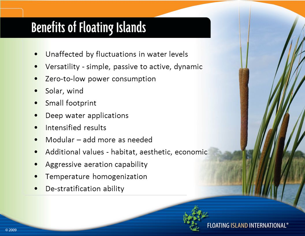 Unaffected by fluctuations in water levels Versatility - simple, passive to active, dynamic Zero-to-low power consumption Solar, wind Small footprint Deep water applications Intensified results Modular – add more as needed Additional values - habitat, aesthetic, economic Aggressive aeration capability Temperature homogenization De-stratification ability