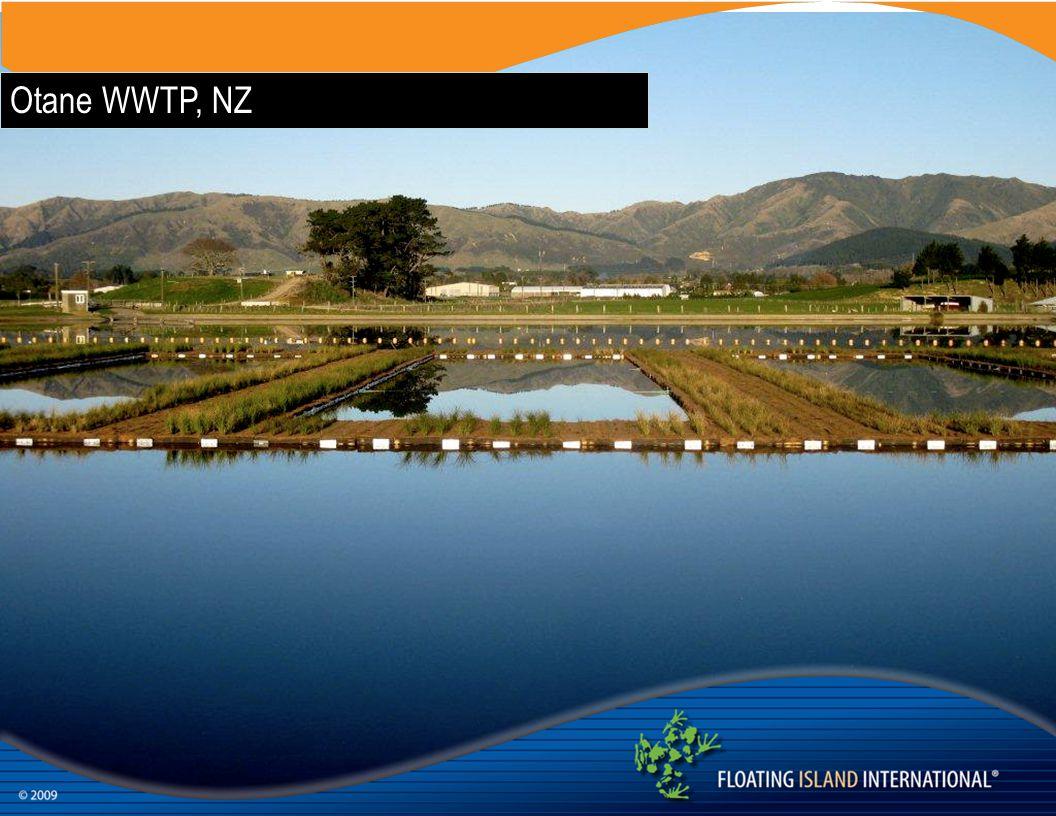 Otane WWTP, NZ