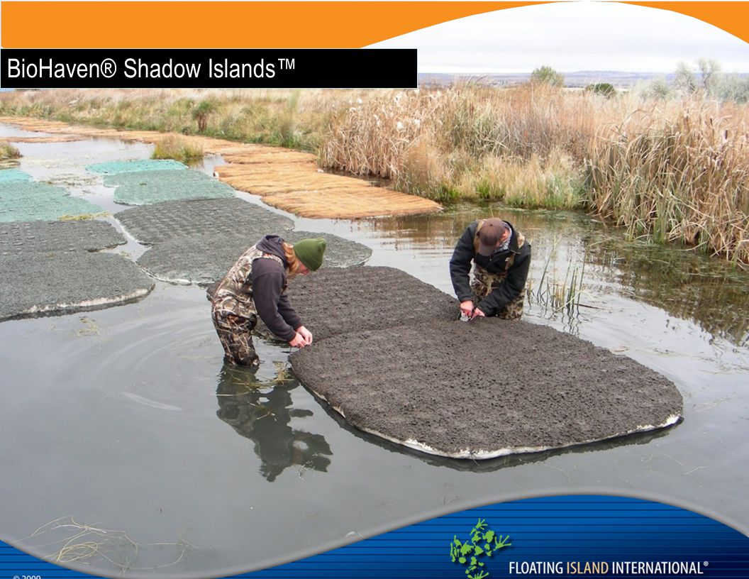 BioHaven® Shadow Islands