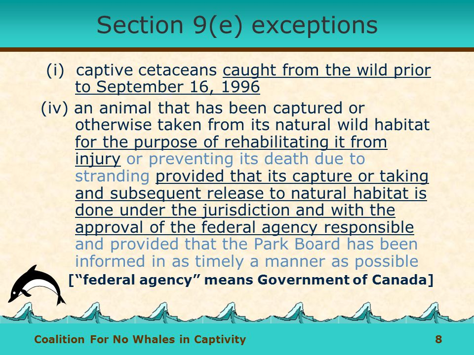 Coalition For No Whales in Captivity 8 Section 9(e) exceptions (i) captive cetaceans caught from the wild prior to September 16, 1996 (iv) an animal that has been captured or otherwise taken from its natural wild habitat for the purpose of rehabilitating it from injury or preventing its death due to stranding provided that its capture or taking and subsequent release to natural habitat is done under the jurisdiction and with the approval of the federal agency responsible and provided that the Park Board has been informed in as timely a manner as possible [federal agency means Government of Canada]