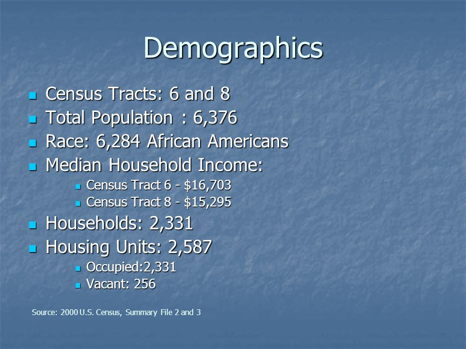 Demographics Census Tracts: 6 and 8 Census Tracts: 6 and 8 Total Population : 6,376 Total Population : 6,376 Race: 6,284 African Americans Race: 6,284