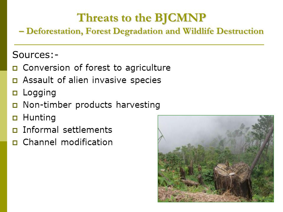 Threats to the BJCMNP – Deforestation, Forest Degradation and Wildlife Destruction Sources:- Conversion of forest to agriculture Assault of alien invasive species Logging Non-timber products harvesting Hunting Informal settlements Channel modification