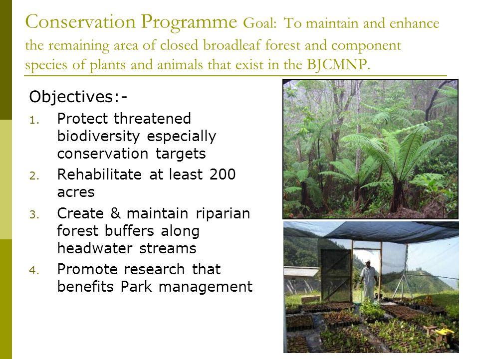 Conservation Programme Goal: To maintain and enhance the remaining area of closed broadleaf forest and component species of plants and animals that exist in the BJCMNP.