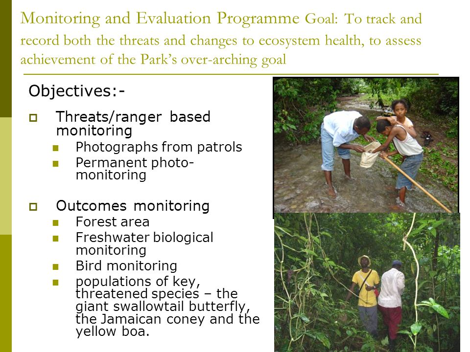 Monitoring and Evaluation Programme Goal: To track and record both the threats and changes to ecosystem health, to assess achievement of the Parks over-arching goal Objectives:- Threats/ranger based monitoring Photographs from patrols Permanent photo- monitoring Outcomes monitoring Forest area Freshwater biological monitoring Bird monitoring populations of key, threatened species – the giant swallowtail butterfly, the Jamaican coney and the yellow boa.
