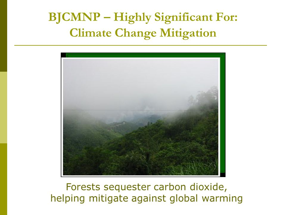 BJCMNP – Highly Significant For: Climate Change Mitigation Forests sequester carbon dioxide, helping mitigate against global warming
