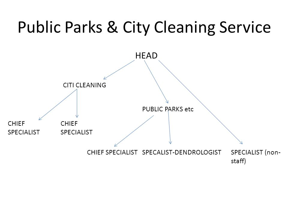 Public Parks & City Cleaning Service HEAD PUBLIC PARKS etc CITI CLEANING CHIEF SPECIALIST SPECALIST-DENDROLOGISTSPECIALIST (non- staff)
