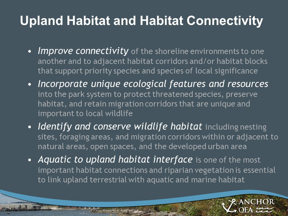 Upland Habitat and Habitat Connectivity Improve connectivity of the shoreline environments to one another and to adjacent habitat corridors and/or hab