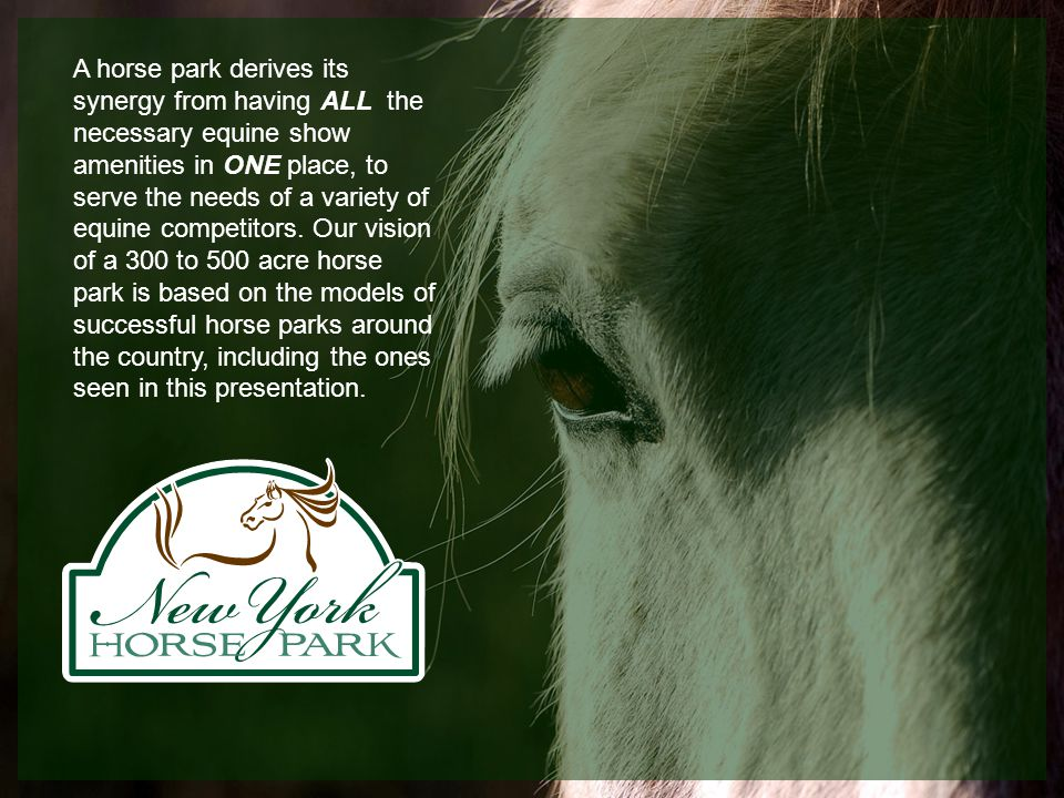 A horse park derives its synergy from having ALL the necessary equine show amenities in ONE place, to serve the needs of a variety of equine competitors.