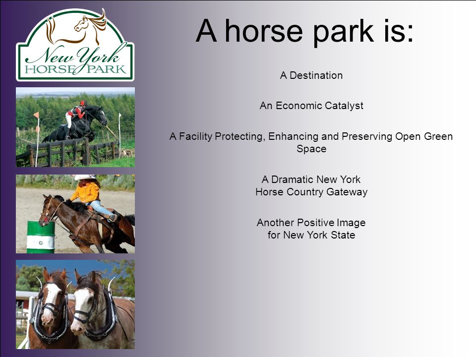 A place where horse enthusiasts may participate in: Exhibitions, Sales, Shows, Rodeos, Team Penning, Cross Country Eventing, Dressage, Polo, Breed Shows, Carriage Driving Shows, Combined Driving Shows, 4-H Competitions, US Pony Club Events, Steeplechase and a host of other agriculturally-related activities.