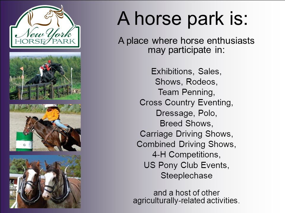 Why have a horse park.The equine economic numbers are eye opening.