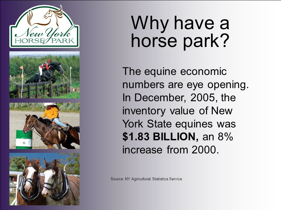 Why have a horse park? The equine economic numbers are eye opening. In December, 2005, the inventory value of New York State equines was $1.83 BILLION