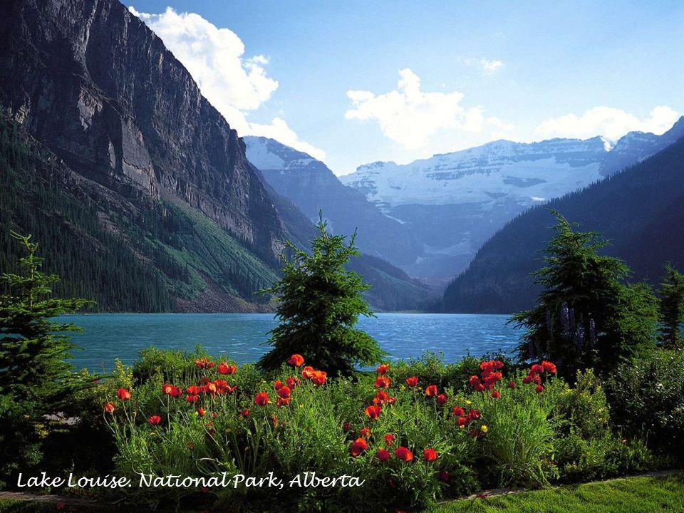 Ni Tuk Lodge Banff National Park.