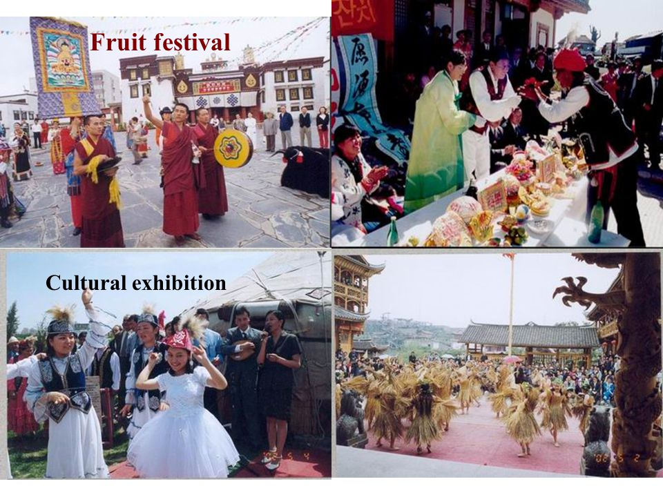 Fruit festival Cultural exhibition