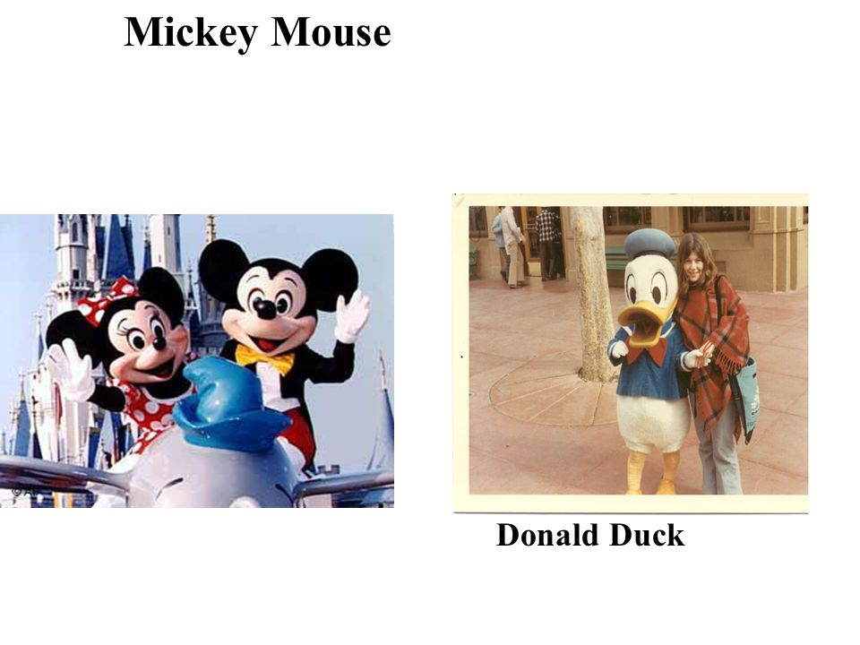 Mickey Mouse Donald Duck