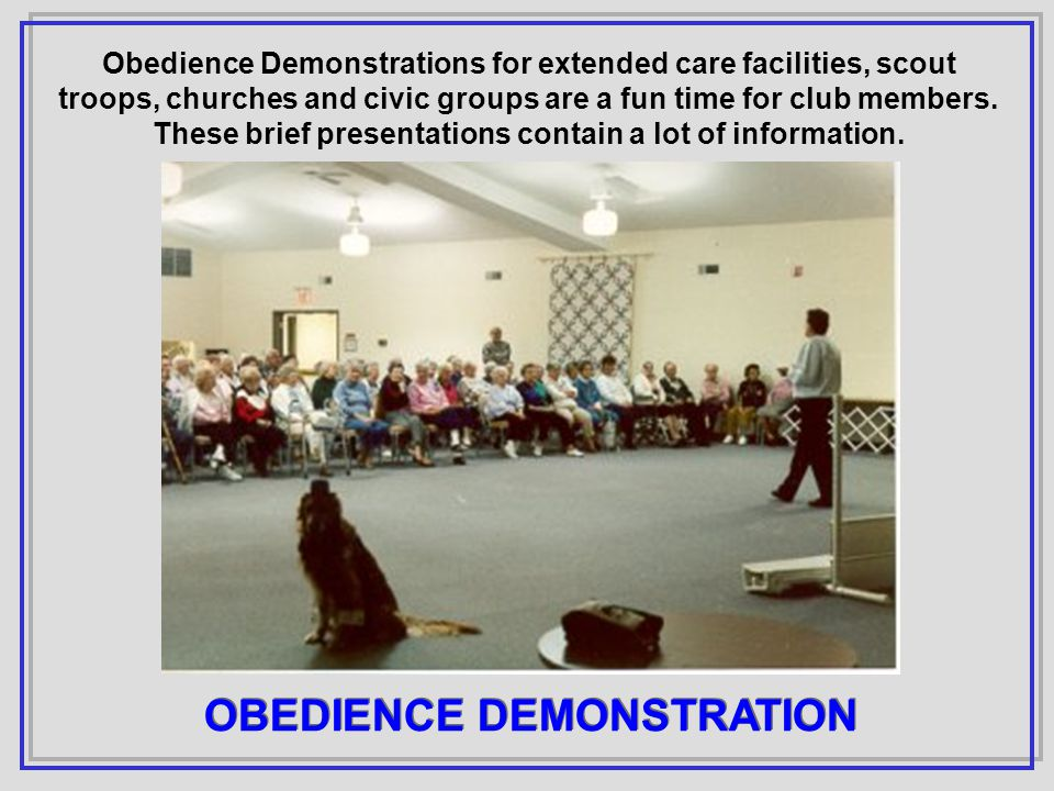Obedience Demonstrations for extended care facilities, scout troops, churches and civic groups are a fun time for club members.