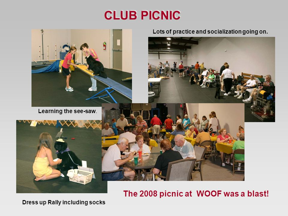 The 2008 picnic at WOOF was a blast. Lots of practice and socialization going on.