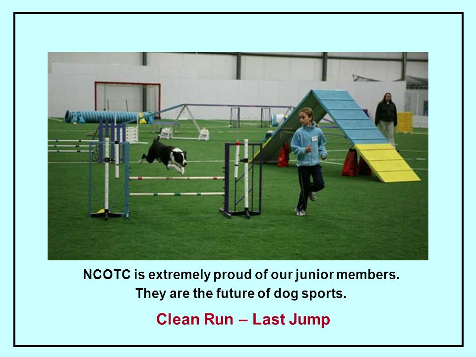 NCOTC is extremely proud of our junior members. They are the future of dog sports.