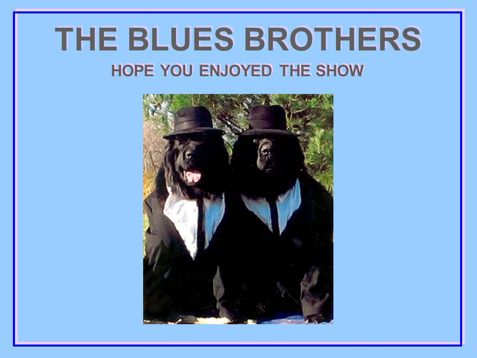 THE BLUES BROTHERS HOPE YOU ENJOYED THE SHOW