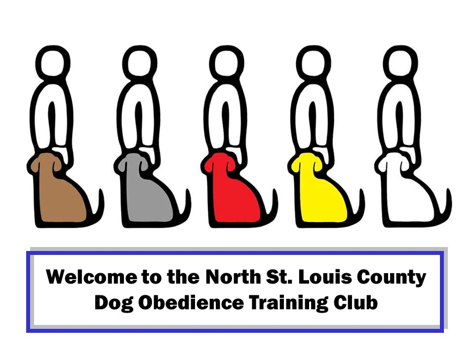 Welcome to the North St. Louis County Dog Obedience Training Club