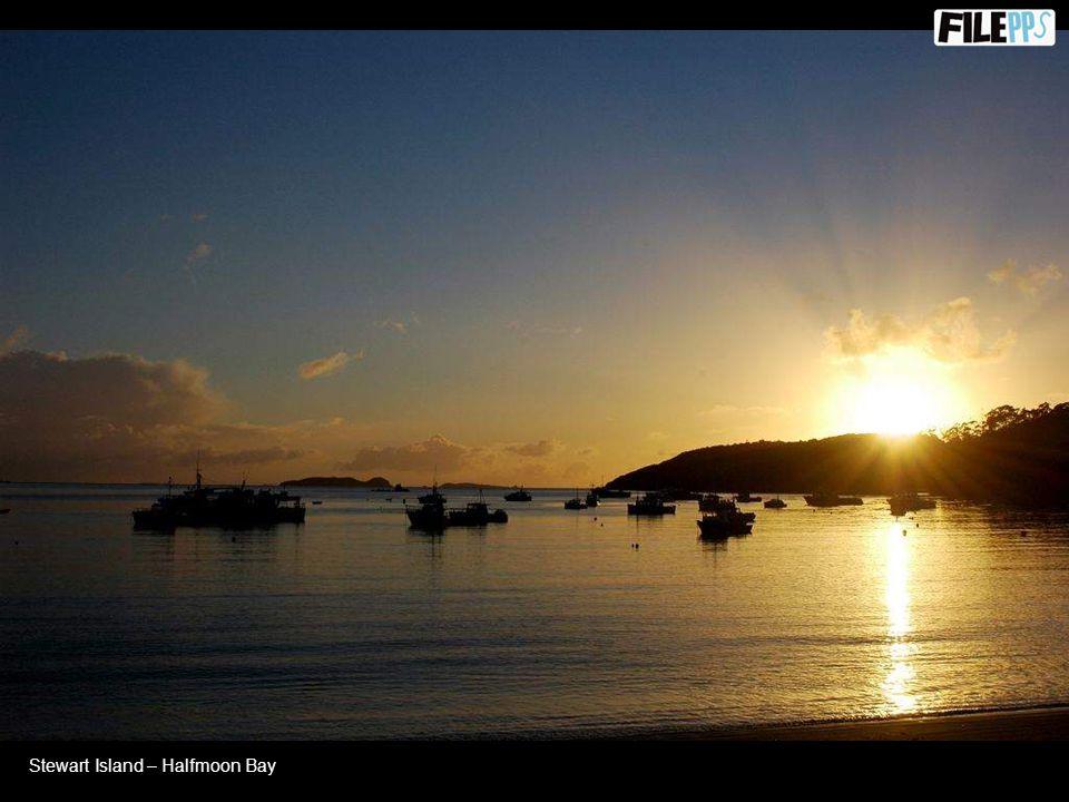 Stewart island - Watercress Bay