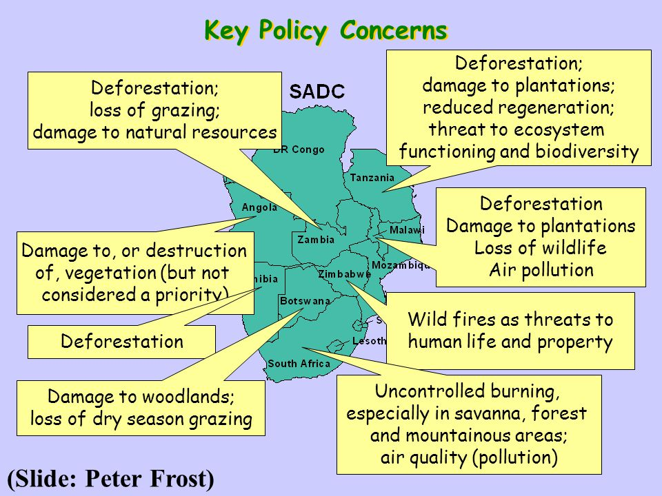 Deforestation Damage to plantations Loss of wildlife Air pollution Wild fires as threats to human life and property Damage to, or destruction of, vege