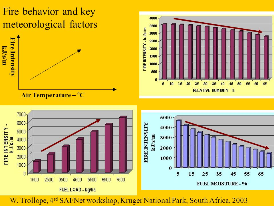 Air Temperature – 0 C Fire Intensity kJ/s/m Fire behavior and key meteorological factors W. Trollope, 4 rd SAFNet workshop, Kruger National Park, Sout