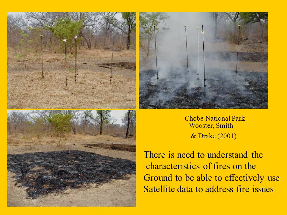 Chobe National Park Wooster, Smith & Drake (2001) There is need to understand the characteristics of fires on the Ground to be able to effectively use