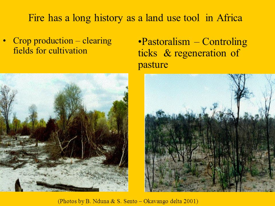 Assessment of fire damage – burnt scars: Mostly visual based and therefore subject to inconsistencies Courtesy – Jomo Mafoko Agricutural Resource Board Botswana