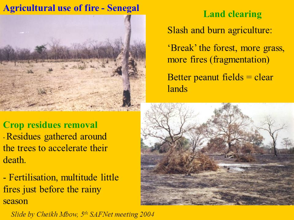 Area burnt - Mapping Burnt Scars Fire scars: These can be detected on the bases of 3 main changes on surface properties following a fire: – Vegetation removal – Deposited combustion residue –Temperature differences: At daytime burnt areas will be hotter than vegetated areas – best contrast is at mid-day.