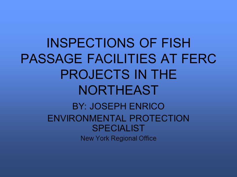 INSPECTIONS OF FISH PASSAGE FACILITIES AT FERC PROJECTS IN THE NORTHEAST BY: JOSEPH ENRICO ENVIRONMENTAL PROTECTION SPECIALIST New York Regional Offic