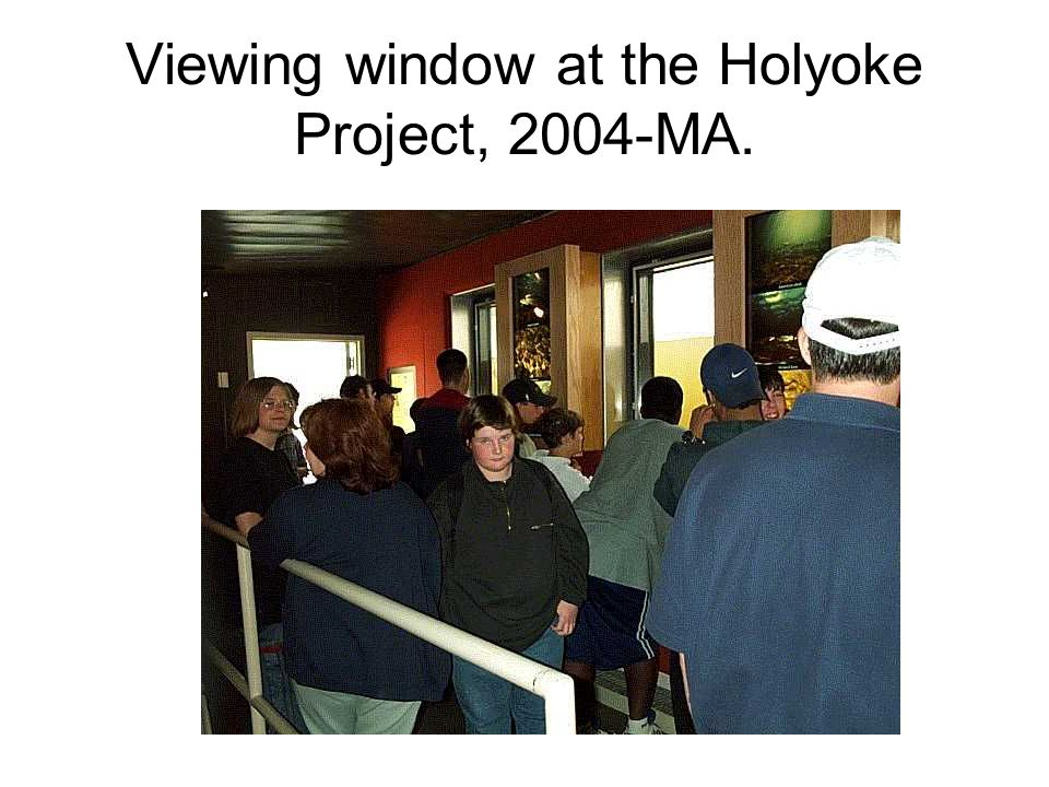 Viewing window at the Holyoke Project, 2004-MA.