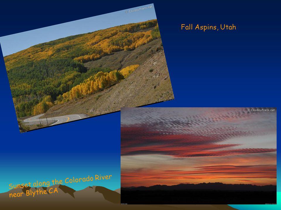 Near Lordsburg NM In Sonora AZ